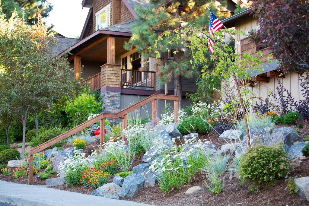 Xeriscape | Suzanne Day Audette Landscape Design on Mountain Backyard Ideas id=20566